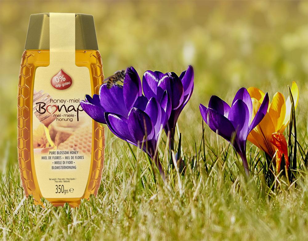 primavera-miel