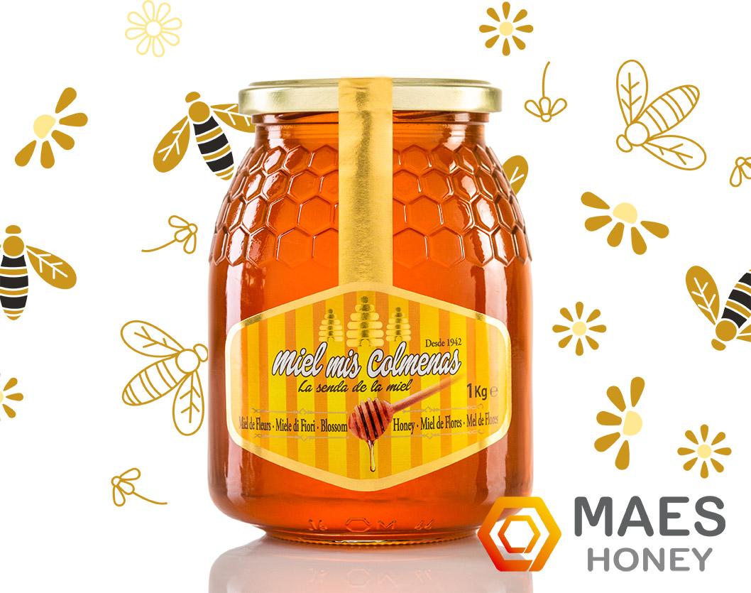 reconocimiento abejas dia internacional
