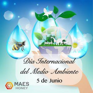 dia-internacional-medio-ambiente