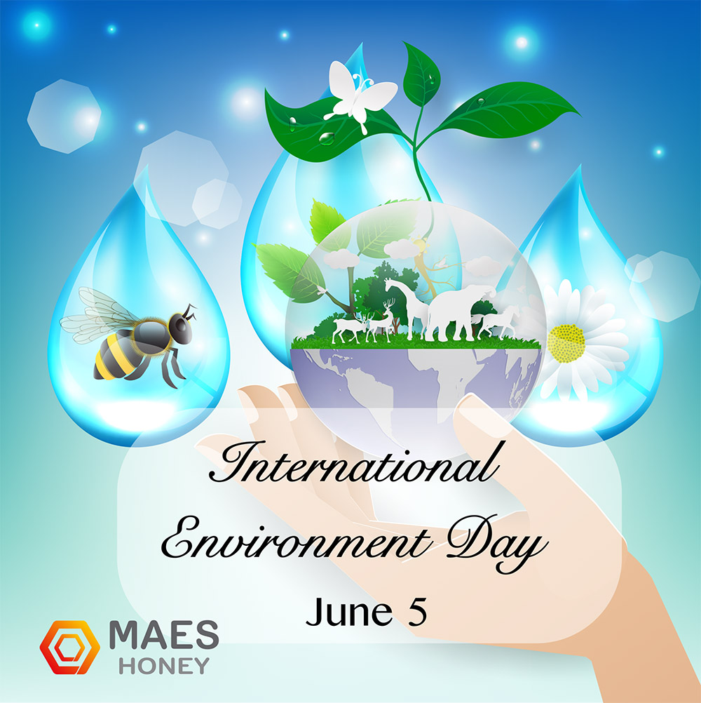 international-environment-day