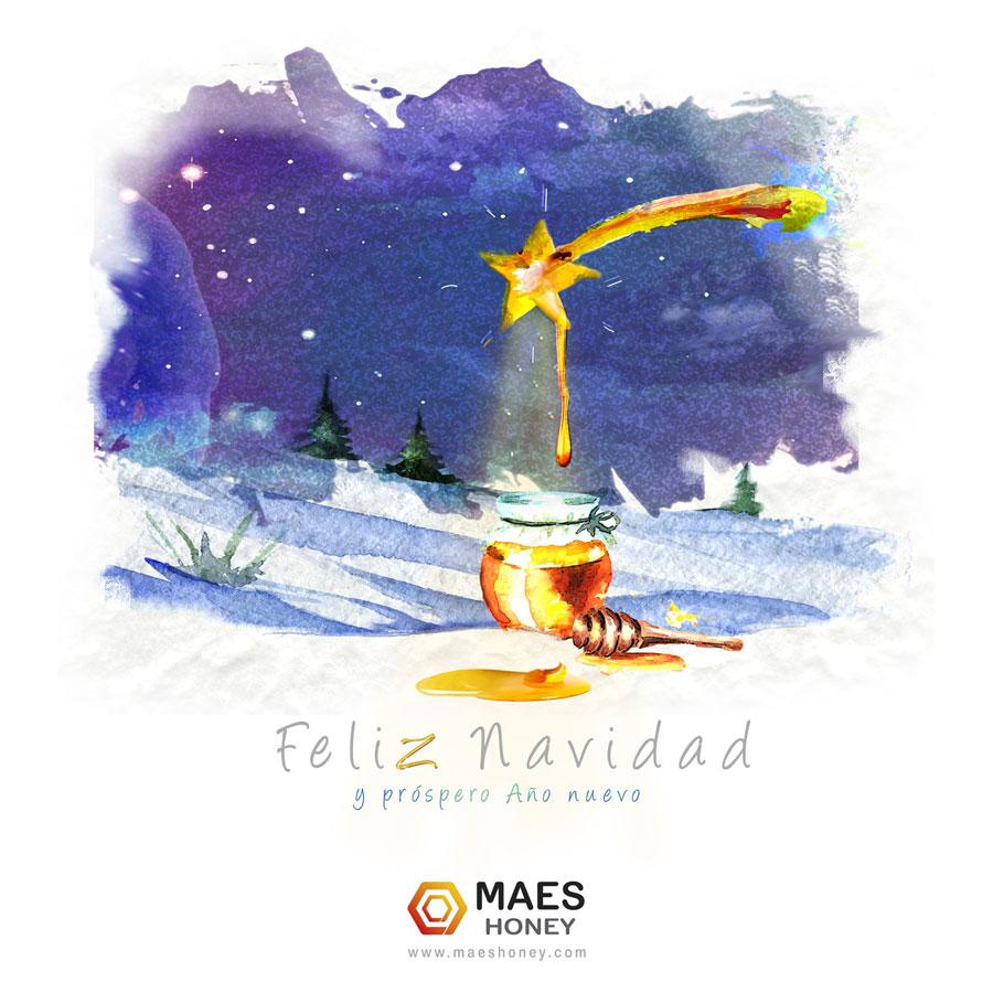 Feliz-Navidad-19-Maes
