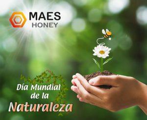 Día mundial de la naturaleza. Maes Honey.
